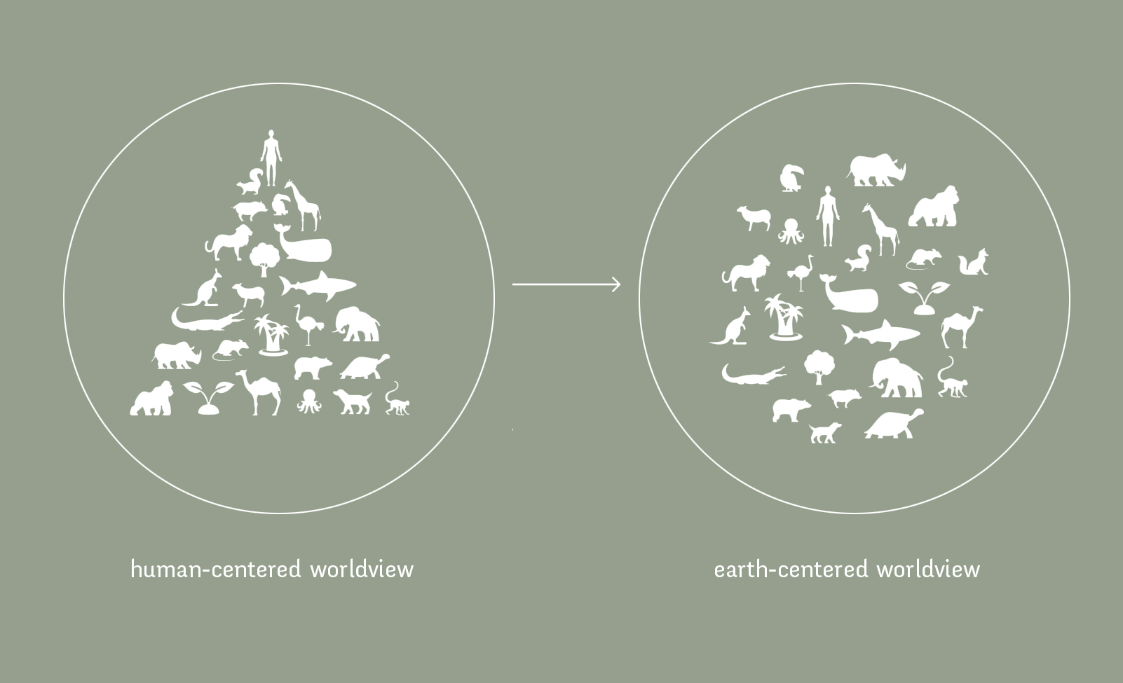 earth-centered-worldview