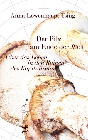 Der-Pilz-am-anderen-Ende-der-Welt